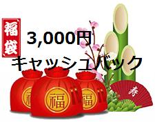 LAND-FX新春キャンペーン